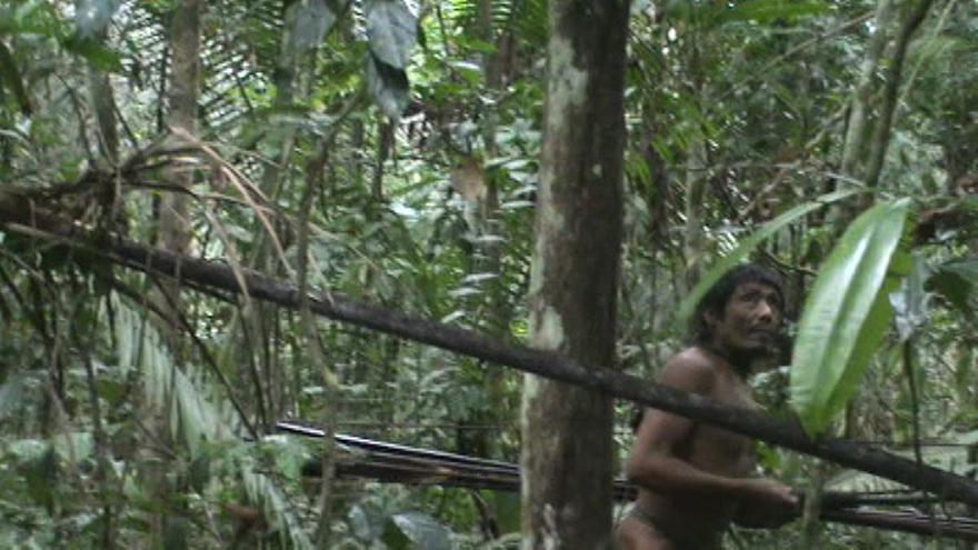 Imagen de un hombre kawahiva, capturada en un encuentro casual de agentes gubernamentales con la tribu, en Brasil. En las profundidades de la Amazonia brasileña el pequeño grupo de indígenas aislados al que pertecene podría estar a punto de extinguirse. Los últimos kawahivas viven en una huida permanente, escapando de la violencia de los foráneos. Los ataques y las enfermedades han matado a sus familiares. Survival International hace un llamamiento con motivo del Día Internacional de los Pueblos Indígenas para que Brasil demarque y proteja debidamente la tierra de este pueblo para evitar su genocidio. COPYRIGHT © FUNAI