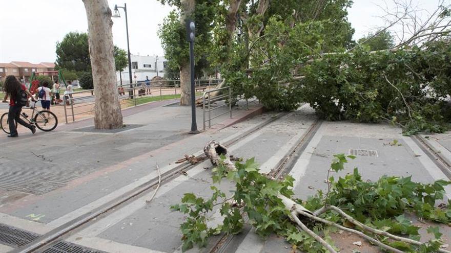 El viento causa treintena incidencias en Granada, con dos heridos, y un incendio