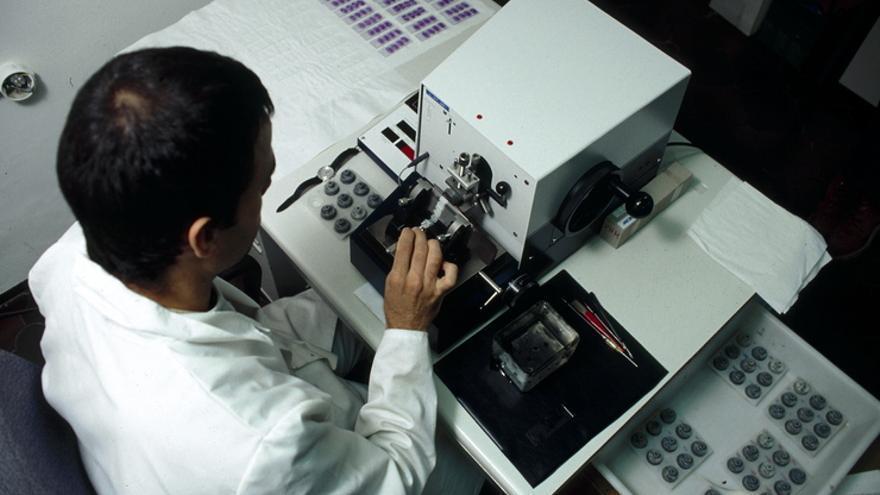 Un investigador analiza datos. / Foto: Irekia