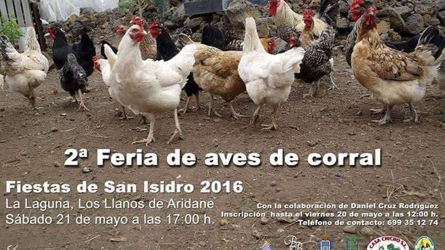 Cartel de la 2ª Feria de Aves de Corral.