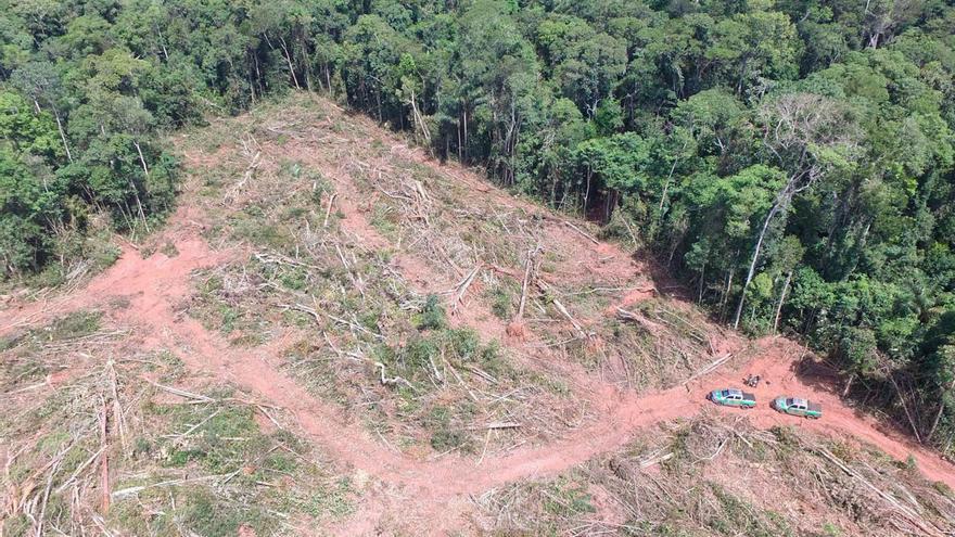 Imagen de una zona desforestada del Amazonas publicada por el Instituto Brasileño del Medio Ambiente y de los Recursos Naturales Renovables.