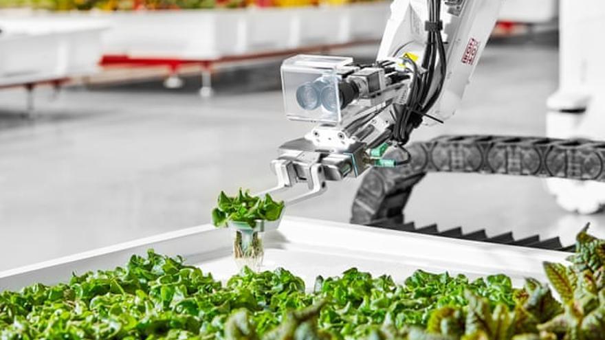 """""""Cada robot sabe cómo hacer cierto trabajo, pero no saben cuándo deben hacerlo"""", explica el cofundador de Iron Ox"""