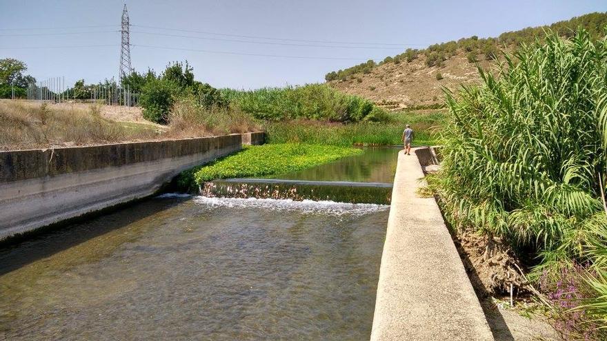 Imagen de la Acequia Común de l'Ènova, en el río Albaida