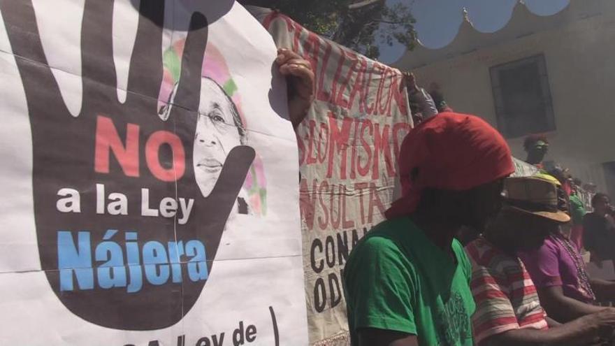 """El anteproyecto """"no ha sido socializado"""" con los pueblos indígenas, señaló la activista, que insistió que la propuesta es """"inconsulta e inventada"""" por el Gobierno hondureño."""