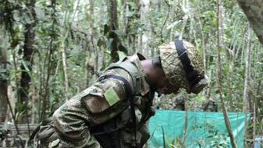 El Ejército podría haber abatido a unos 30 guerrilleros de las FARC