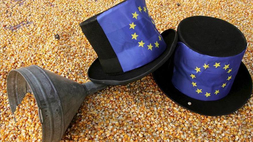 Europa sólo permite transgénicos del maíz y la patata.