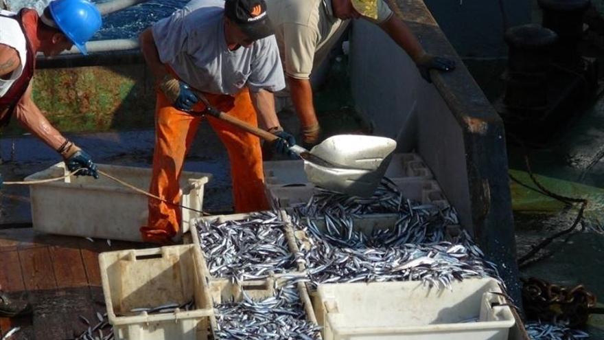 Los pescadores bajan la mercancía en el puerto.