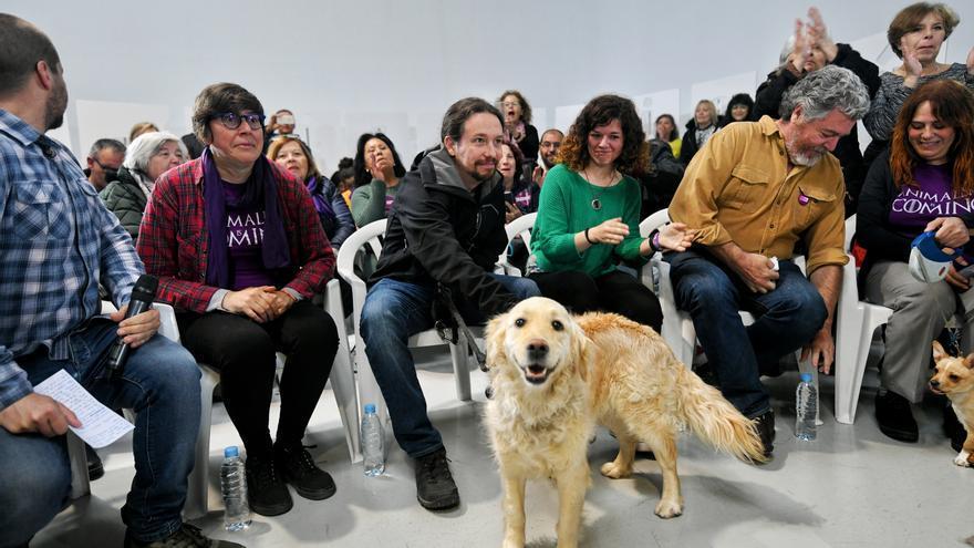 El candidato de Unidas Podemos, Pablo Iglesias, con su perra 'Leona' en un acto de campaña.