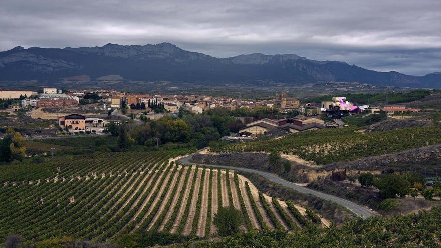 Imagen de un paisaje de Rioja Alavesa, con el pueblo de Elciego al fondo.