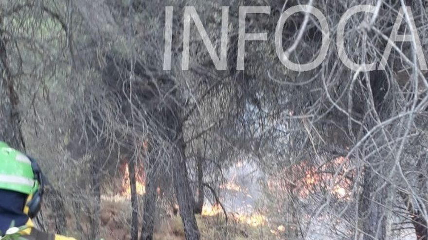 Fiscalía revisará incendios anteriores para comprobar características y pedirá reaperturas si hay detenciones