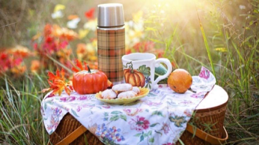 Esto es lo que necesitas para un picnic perfecto, viandas incluidas
