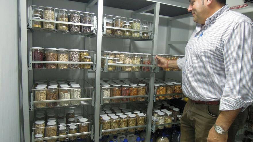 Basilio Pérez, consejero de Agricultura del Cabildo de La Palma, en el Centro de Agrobiodiversidad, ante muestras de semillas.