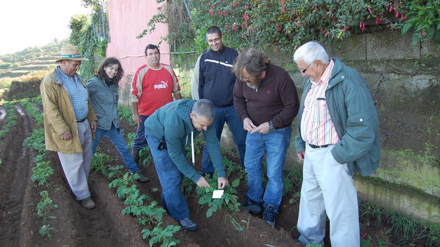 La finalidad de estos trabajos es conseguir disminuir las pérdidas de cosecha.