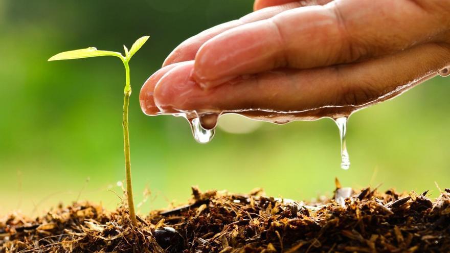 El cuidado del suelo un componente clave para la - Como solar un suelo ...