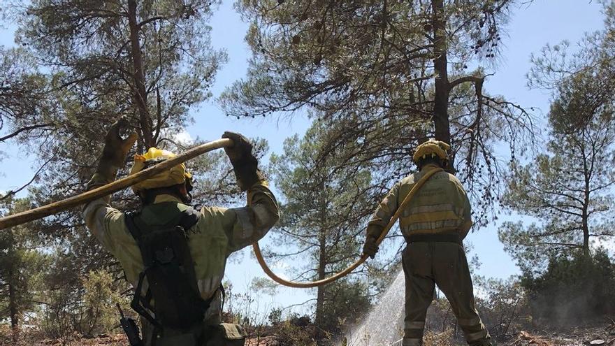 Bomberos de las brigadas forestales trabajan sobre el terreno