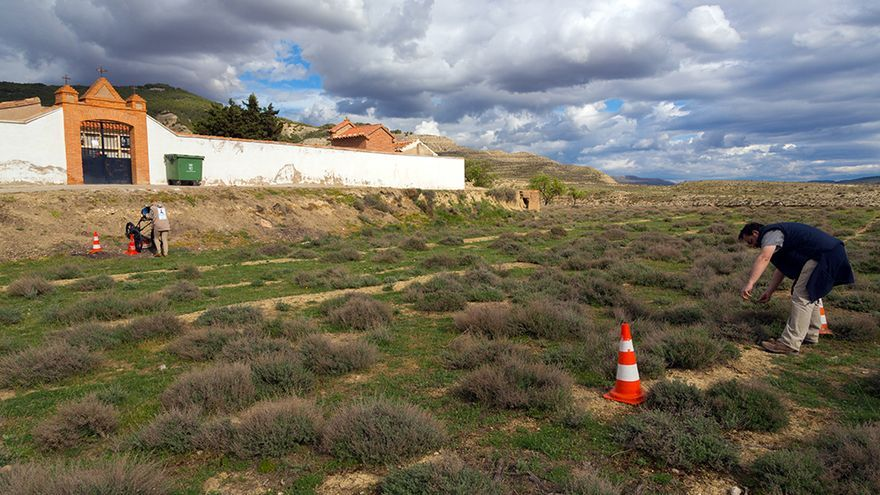 En la fosa aparecieron los restos de dos personas. Foto: Arico