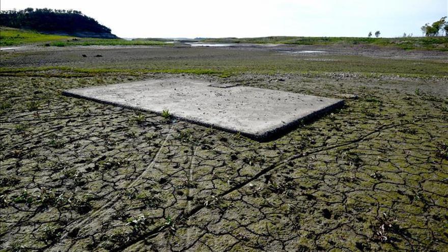 Los suelos, sumideros de carbono esenciales contra el cambio climático