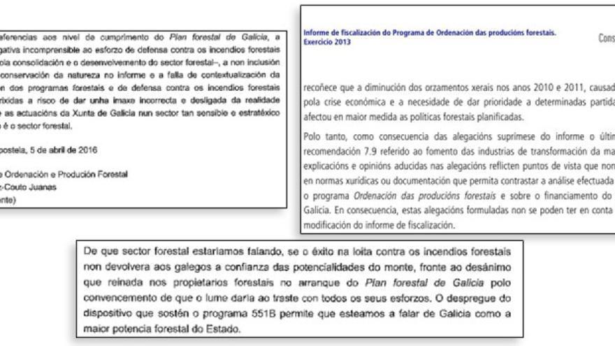 Argumento del director forestal de la Xunta a favor de gastar más en el fuego que en la ordenación forestal y crítica del Consello de Contas