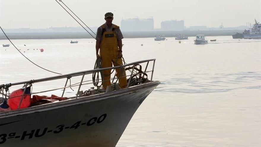 El sector del cerco del Golfo de Cádiz se reunirá hoy con Arias Cañete para abordar su situación