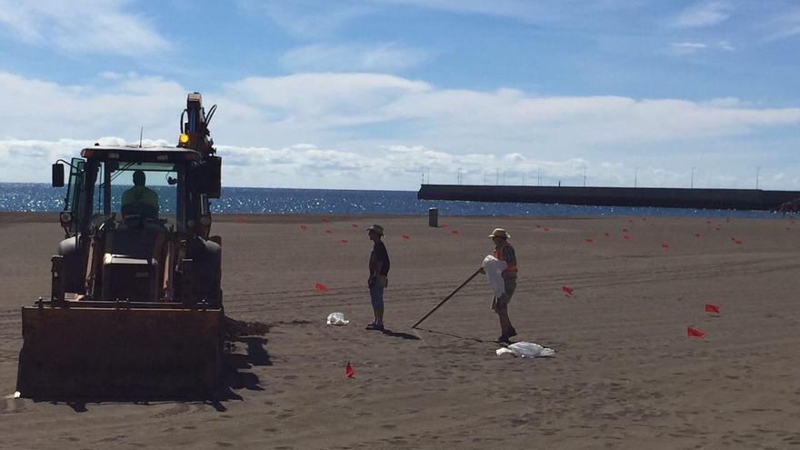 Colocación de las banderas que ondearán en la segunda edición de WOMAD Fuerteventura