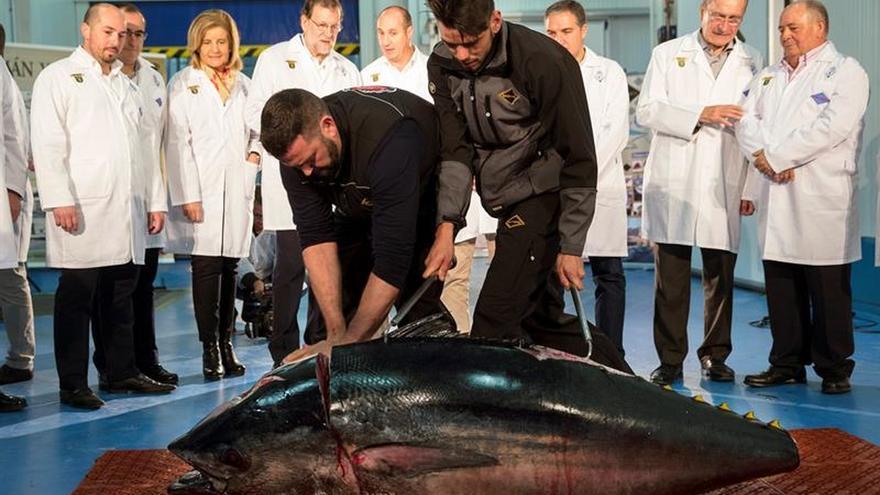 Rajoy asiste al despiece de un atún durante su visita a una empresa alimentaria