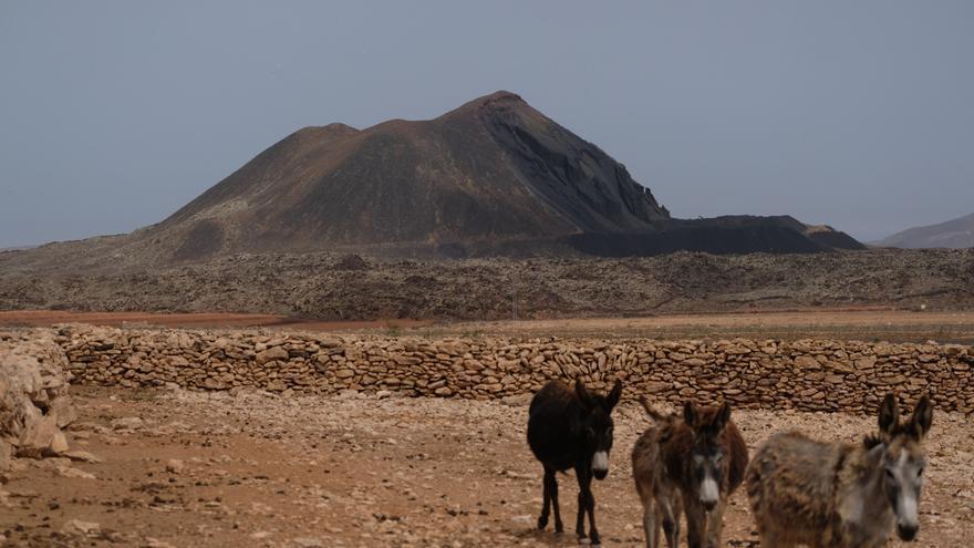 La Caldera de La Laguna, un espacio público en Tuineje (Fuerteventura), es colindante al paisaje protegido Malpaís Grande, área de la Red Natura.