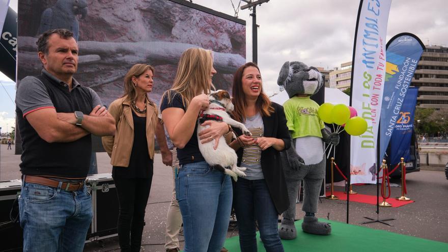La alcaldesa de Santa Cruz de Tenerife, Patricia Hernández, durante la celebración del Día de los Animales.
