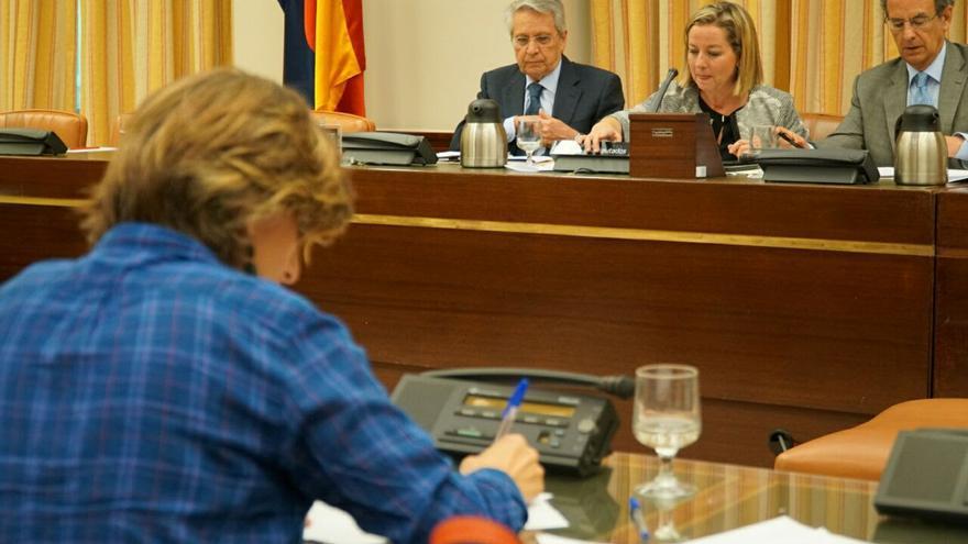 Fernández Gayoso, durante su comparecencia en el Congreso con Yolanda Díaz (En Marea) en primer término