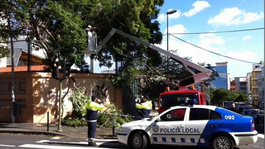 Retirada de una de las jacarandas caídas por el viento en La Salle./Twitter de la Polcia Local.