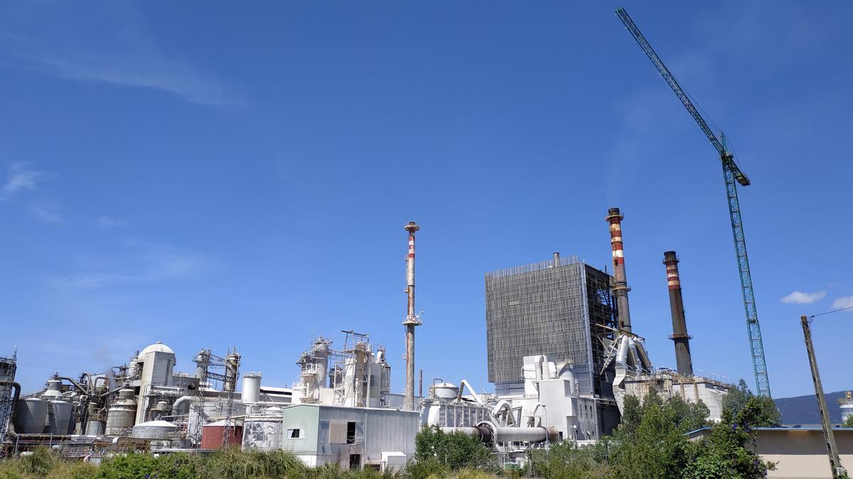 Imagen de la fábrica de Ence Celulosa en Pontevedra.