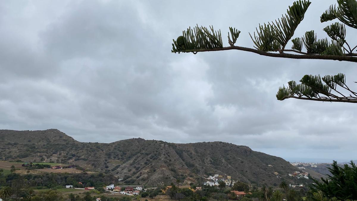 Tafira, Las Palmas de Gran Canaria