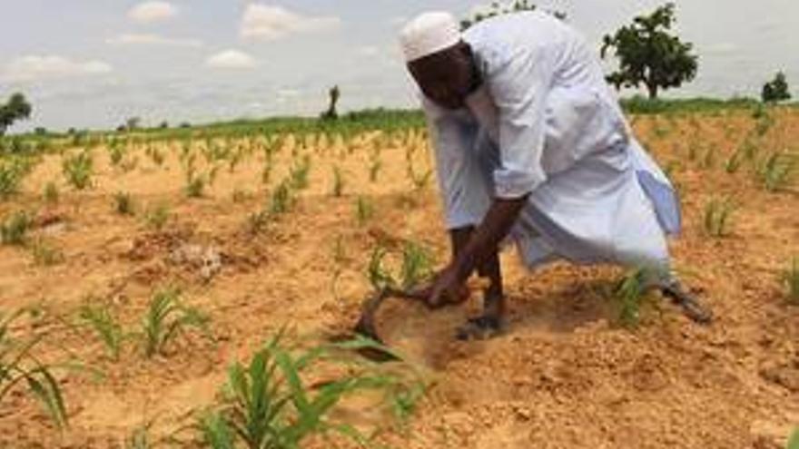 Un campesinodesplazadoprepara la tierra antes de sembrar en Kukarata, en el noreste de Nigeria.