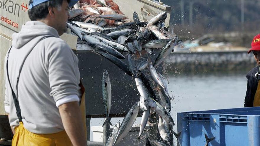 La pesca de caballa empieza con un enfrentamiento entre la flota del Cantábrico