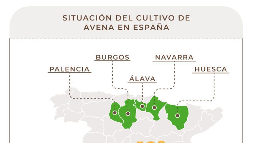 España es el décimo productor mundial de avena.