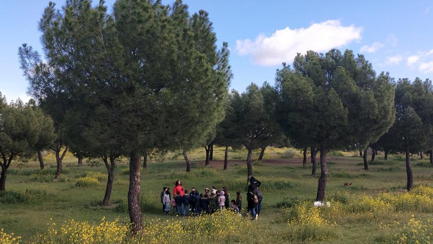 Un grupo de niños participa de actividades inclusivas cerca de la explanada donde estará el aparcamiento.