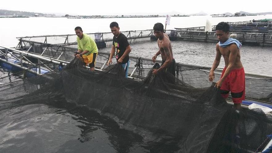 Un laboratorio de piensos en un peculiar lago filipino