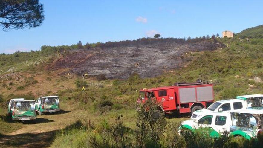 El incendio ha quemado 5 hectáreas de pinar