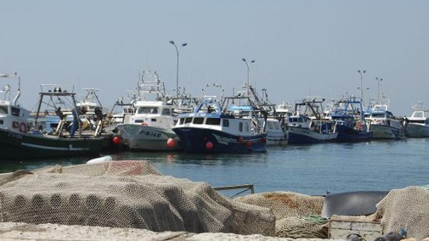 Resultado de imagen de Preocupación por el fallo sobre el acuerdo pesquero con Marruecos