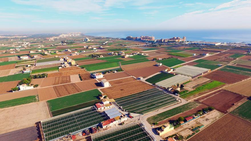 Imagen aérea de la Huerta de València
