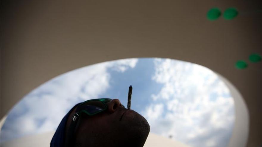 Washington D.C. aprueba la posesión y cultivo de marihuana