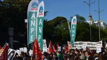 ANPE, primera fuerza sindical en Educación en unos comicios con alta abstención