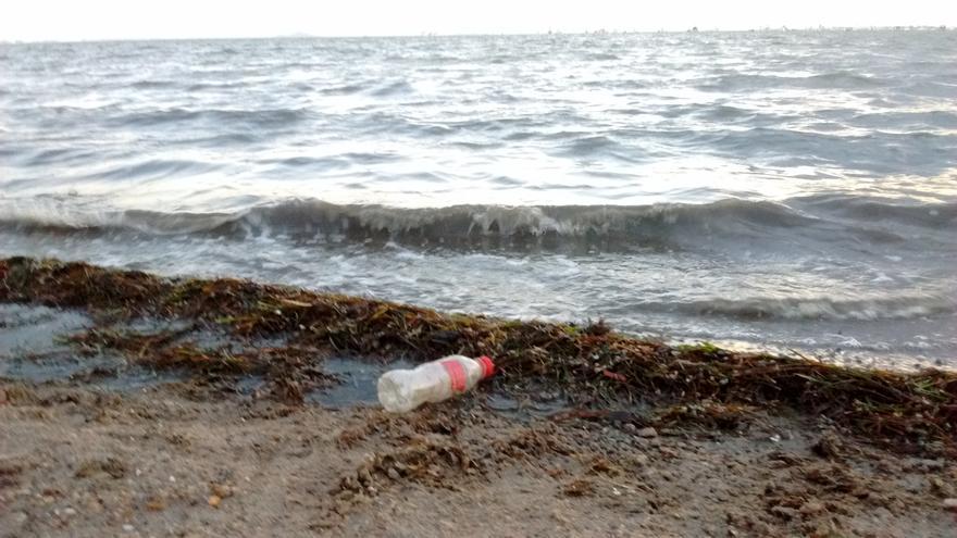Suciedad a la orilla del Mar Menor, en la Región de Murcia / PSS