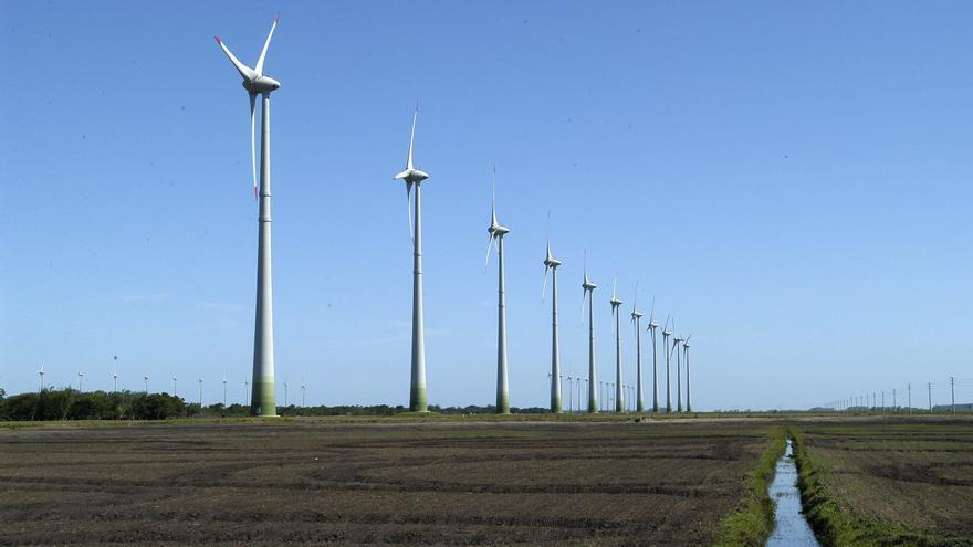 Vista general de un parque eólico.