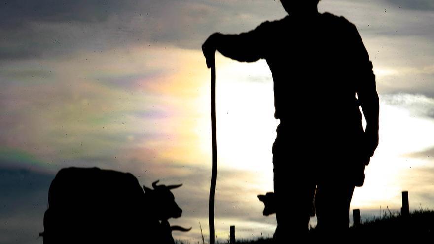 Un pastorero en Asturias.