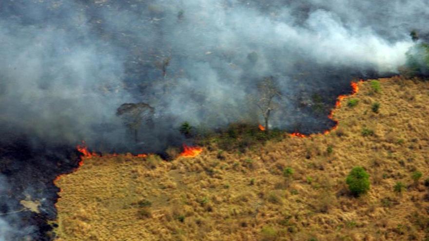 Perú declara en emergencia siete distritos afectados por incendios forestales