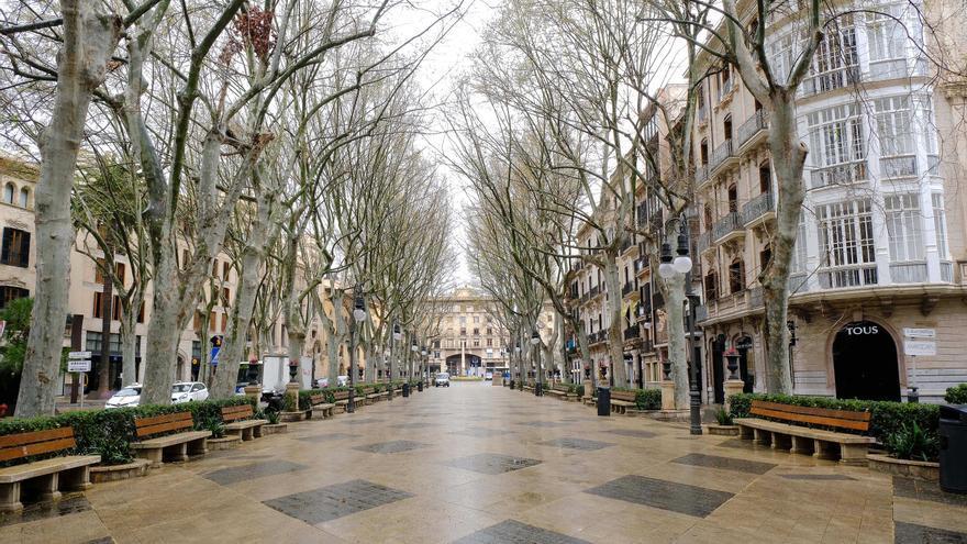 Archivo - El Paseo del Borne, en Palma.