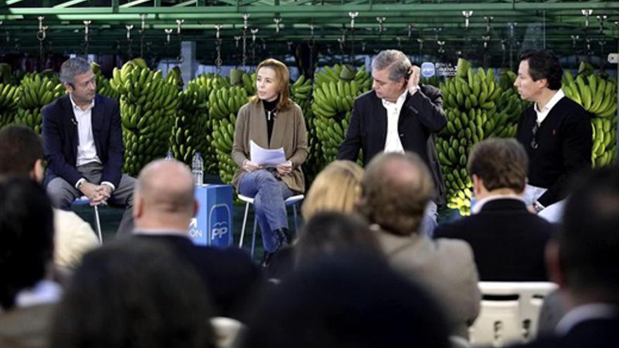 Carlos Floriano, Henry Sicilia, Susana Pérez y Agustín Manrique, este sábado. (EFE/Ramón de la Rocha)