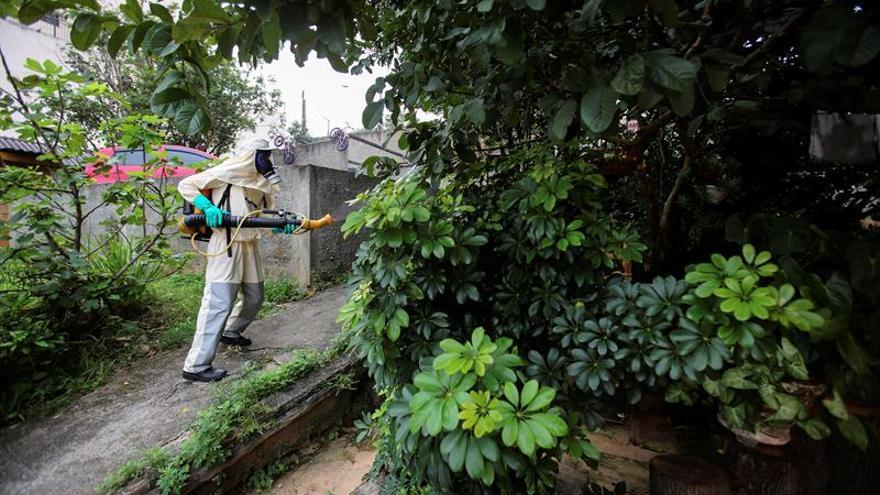 Fumigan Miami Beach contra el mosquito transmisor del zika
