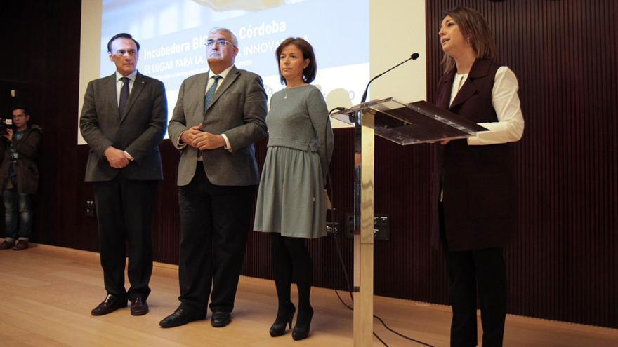 Presentación del proyecto en el Centro de Recepción de Visitantes | RAFAEL MELLADO