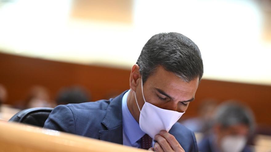 Sánchez vuelve al Senado la próxima semana, la cuarta vez en esta legislatura